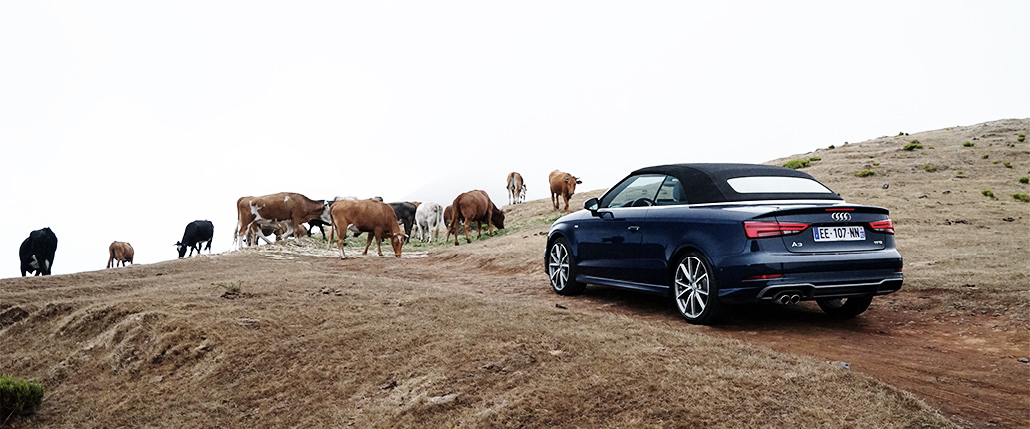 audi-a3-cabriolet-madere-f