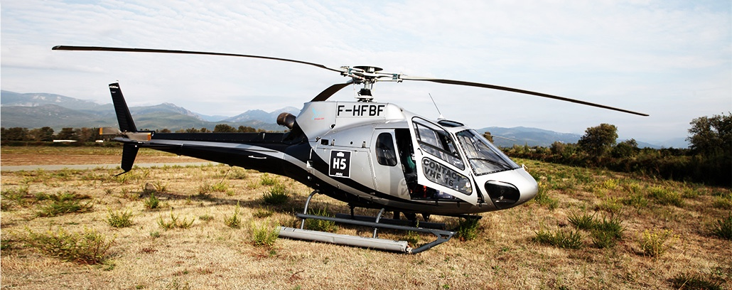 helico-f